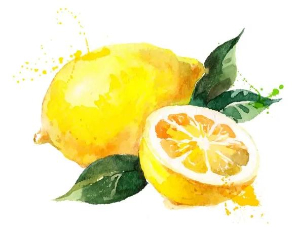 revivogen zlozenie limonén